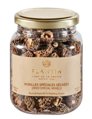 MORILLES SECHEES EXTRA